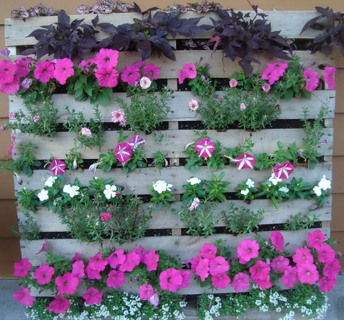 Delicieux A Wonderful Example Of A Recycled Pallet Used As A Vertical Flower Garden.
